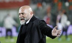 Serie B, Venezia-Cremonese domenica 17 marzo: analisi e pronostico della 29ma giornata della seconda divisione italiana
