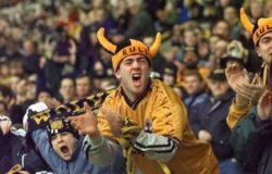 Reading-Wolves 18 novembre, analisi e pronostico Championship