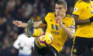 Premier League, Bournemouth-Wolves 23 febbraio: analisi e pronostico della giornata della massima divisione calcistica inglese