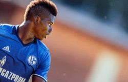 Schalke-Amburgo 19 novembre, analisi e pronostico Bundesliga giornata 12