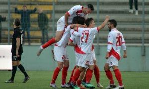 Vicenza-Triestina 17 marzo: match valido per la 31 esima giornata del gruppo B della Serie C. Ospiti in cerca del ritorno ai 3 punti.
