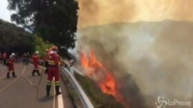 Gran Canaria, continuano le operazioni per spegnere il maxi incendio