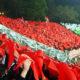 Europa League, CSKA Sofia-Osijek: croati brutto cliente per i locali