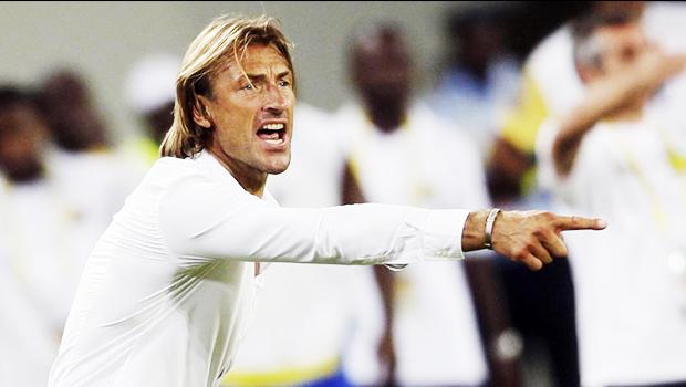 harve_renard_calcio_lille_francia_ligue_1