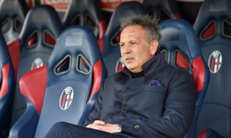 Bologna-Mihajlovic: l'allenatore serbo sembra pronto a rinnovare il contratto con la società bolognese